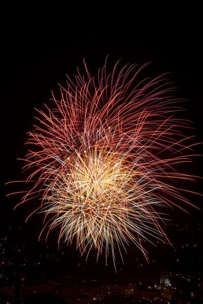 Rec Fireworks Display 2010 by Bryn_Jones