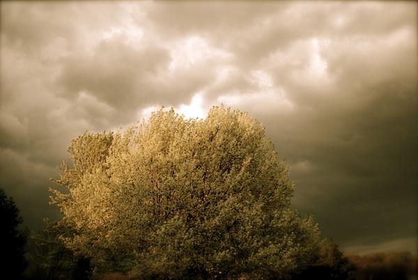 Erie Skies by Josh_R