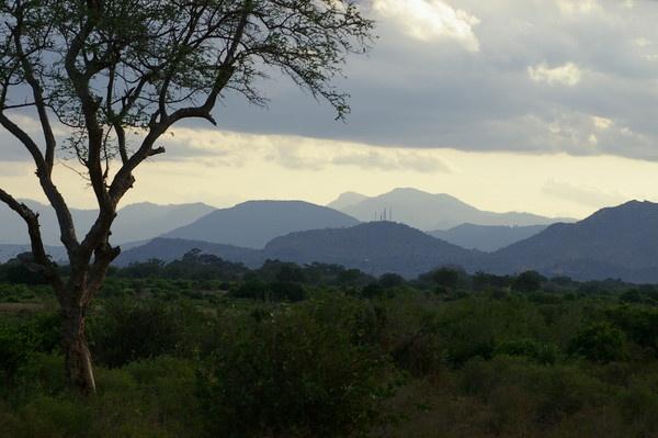 Kenya by chrissyste