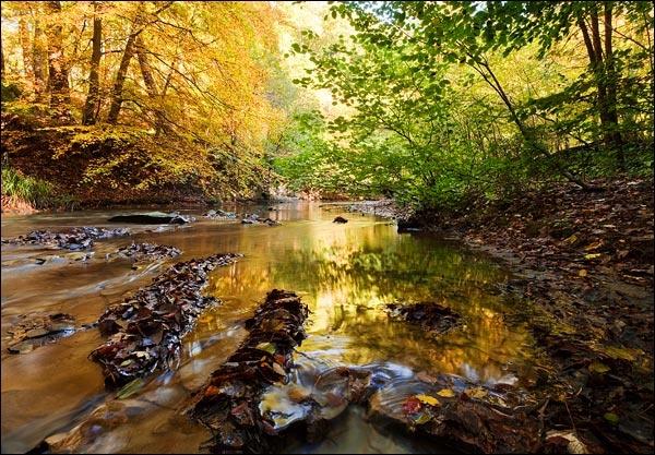 Saltburn Beck by LeighRebecca