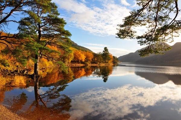 Golden Autumn Reflection by billmac57