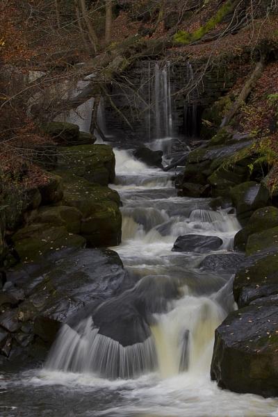 Lower Falls @ Healey Dell by JanieB43