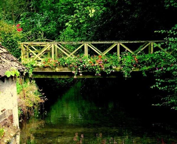 FLOWER BRIDGE by hughsey