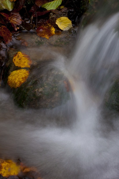 Grewelthorpe Beck fall by Gmurr