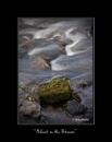 """""""island in the stream"""" by mikey_1967"""