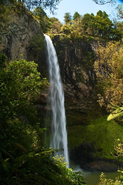 Bridal Veil Falls, Raglan, New Zealand by Dukie