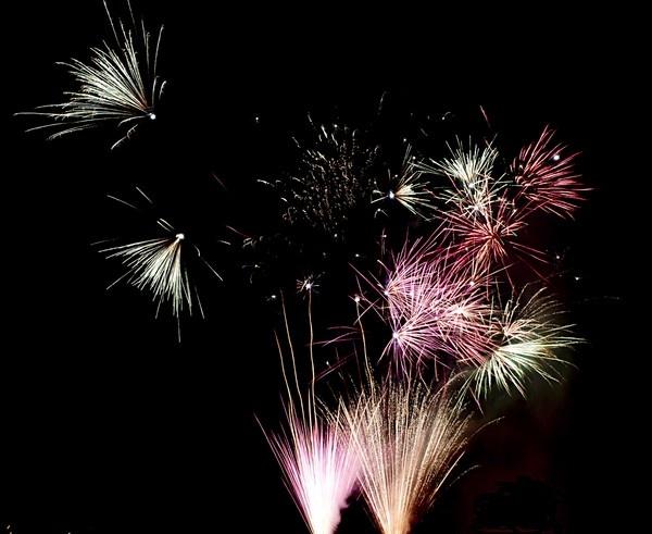 Pretty Fireworks by janeil