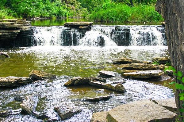 Waterfall Glen (Darien Illinois) by ShotfromaCanon