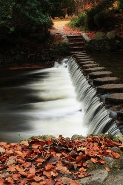 down she flows by pginesi