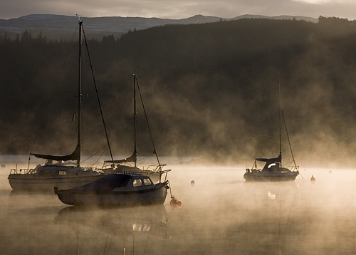 Misty sunrise by Snapper