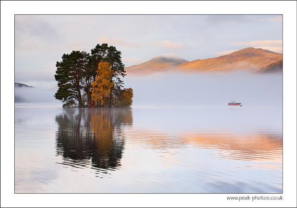 Tay Trees by richardwheel
