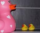 Two little Ducks - 22 by mark2uk