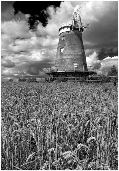 John Webb\'s Windmill    \'Thaxted\' by Natzdad