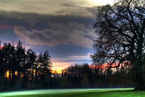 Ground Mist by Beladd
