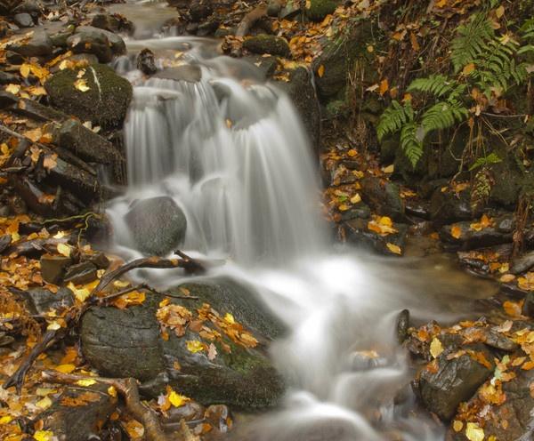 Autumn Falls by PaulJenkins
