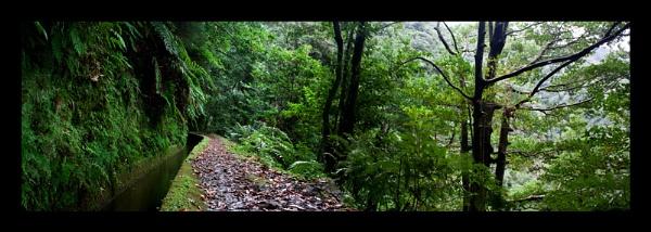 Along the Janela levada by JakeK