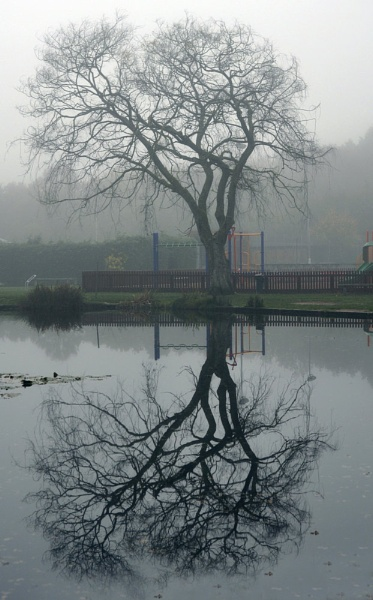 Foggy reflection by Lynx08
