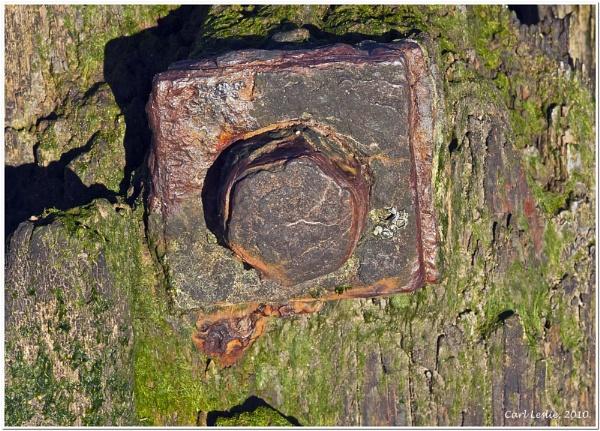 Rusting Away by torres99