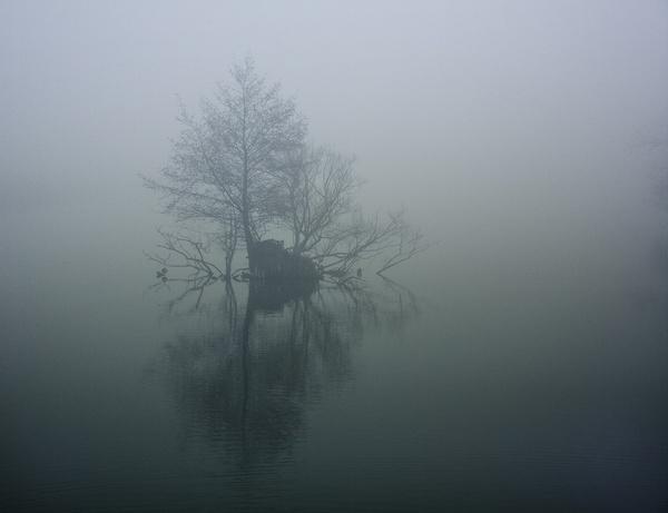 stillness by agne