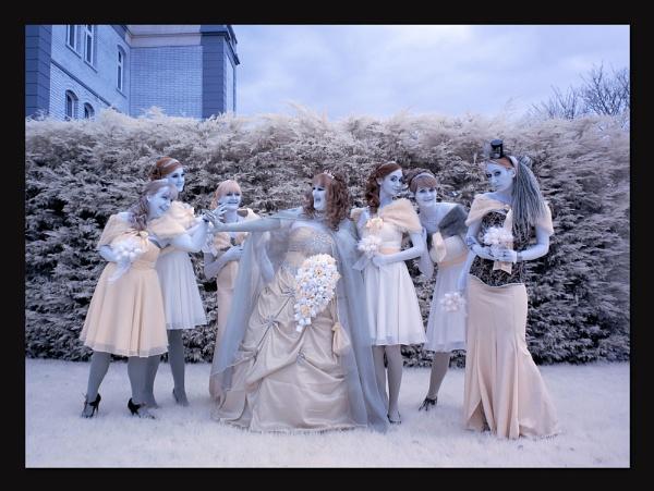 vampire wedding by ianrobinson