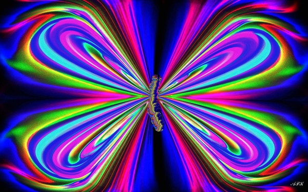 Digital Butterfly #20 by photodesigner