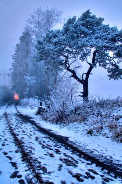 Farm Lane by Beladd
