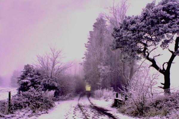 Winter Glow by Beladd