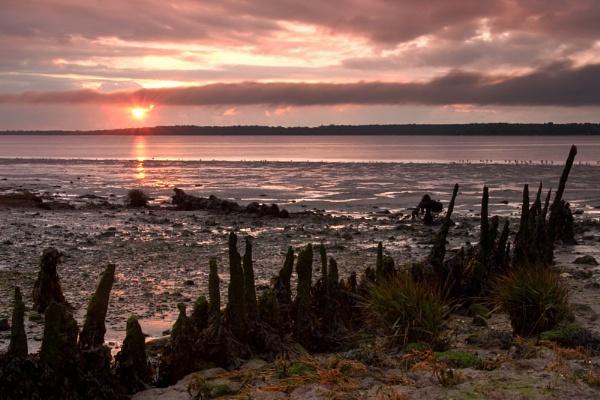 A Warm Dawn In November by Bee76