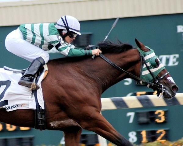 Horse and Jockey by davidblose