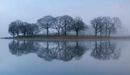 Esthwaite mist