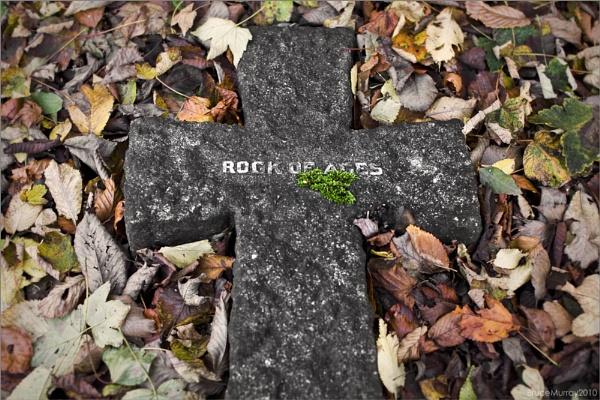 Hard Rock by Brewster