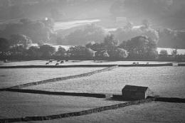 Swaledale Barns&Walls