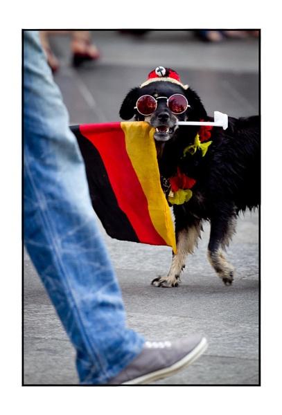 Barking! by jarendell