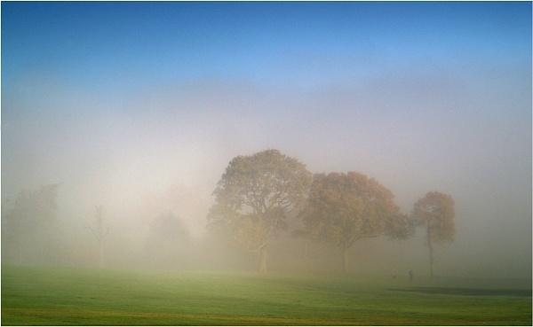 Foggy Hills by ringyneck