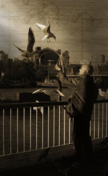 Birdman by Swanvio