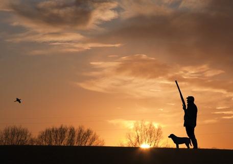 sunset by adobedon