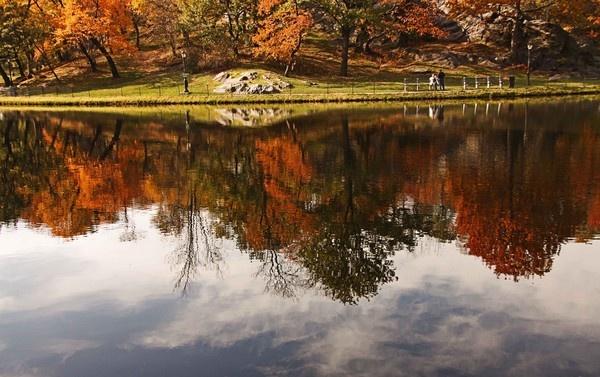 REFLECTION by PauloNascimentoPhotography