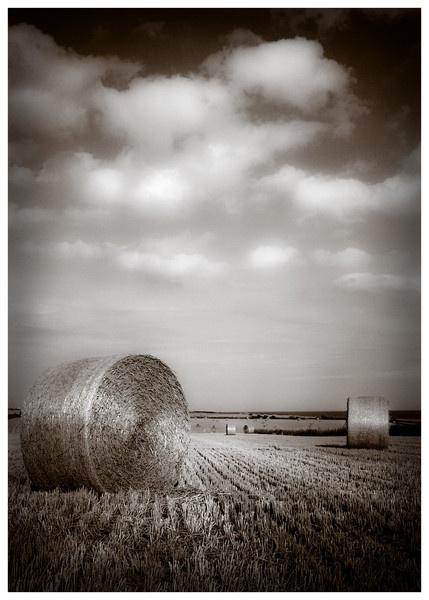 STRAW BALE IN STUBBLE FIELD by MARKDYSON