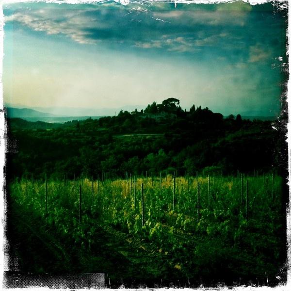 Tuscanny via the iphone by ramblingdogphotography