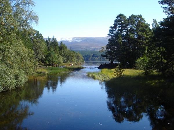 Loch Morlich by sapphy
