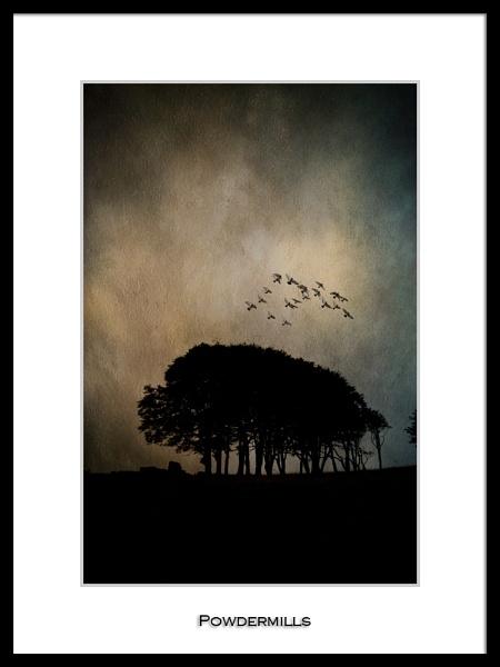 Powdermills by DiegoDesigns