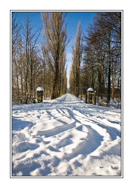 Winter Wonderland by peugeot406