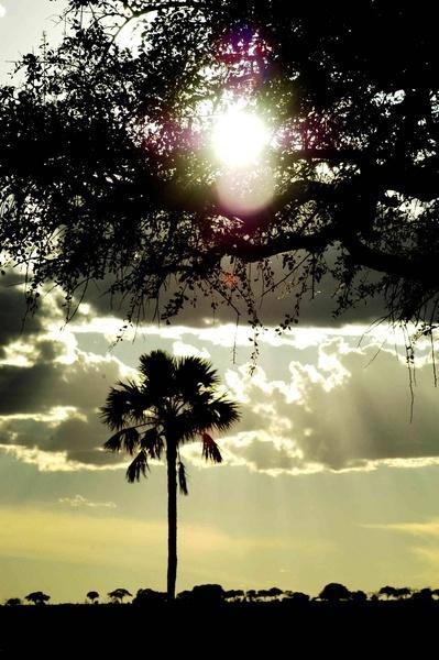 Tanzanian sun set by n8trm