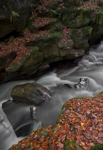 River Spodden by JanieB43