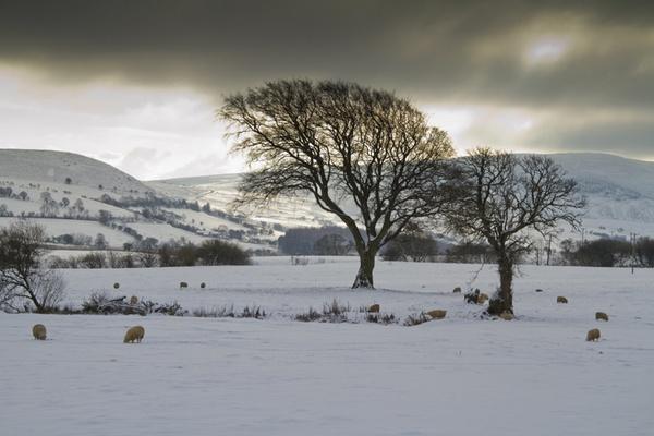 Snowy Wales Scene by urdygurdy