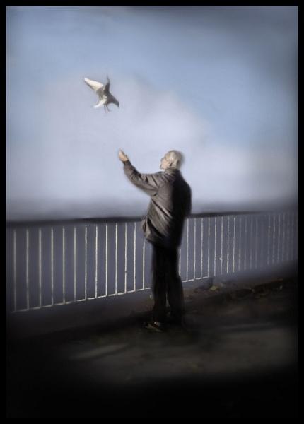 Birdman II by Swanvio