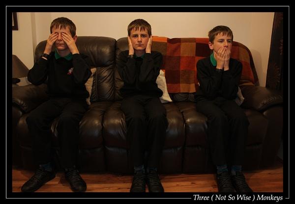 Three (Not So Wise) Monkeys by jjmorgan36