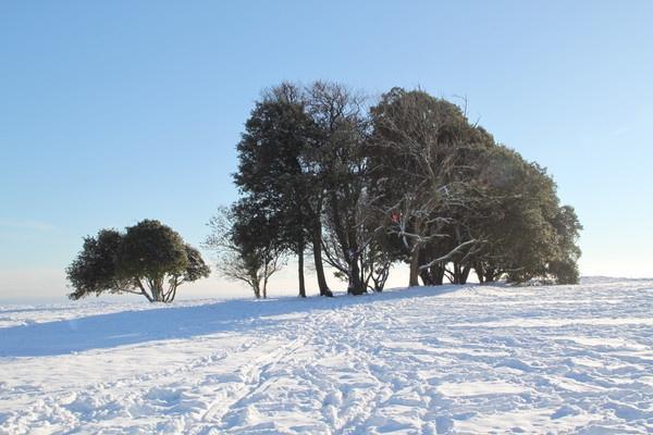 Highdown snow by mrpjspencer