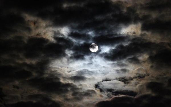 Moon by OliPackwood