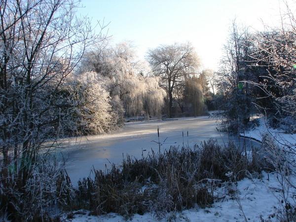 Winter wonderland by rayjac